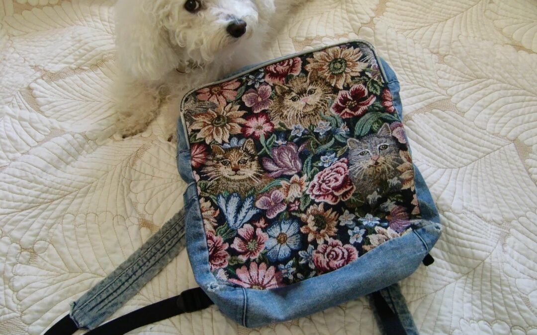 TBT: My Backpack