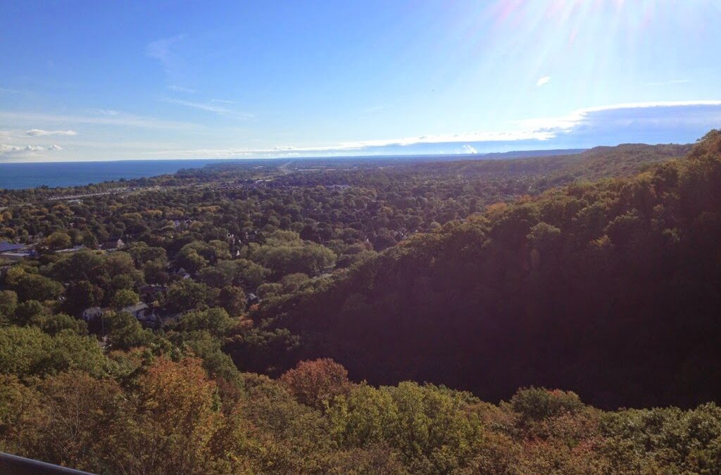 Wellness (almost) Wednesday: Walking the Trails in Fall :)