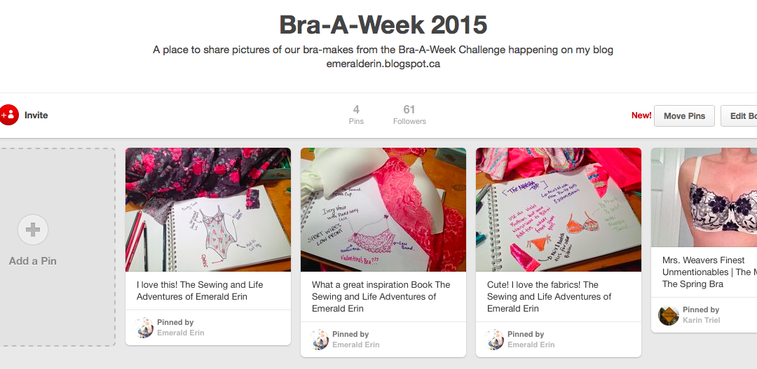 Bra-A-Week – Join me on Pinterest and Flickr!