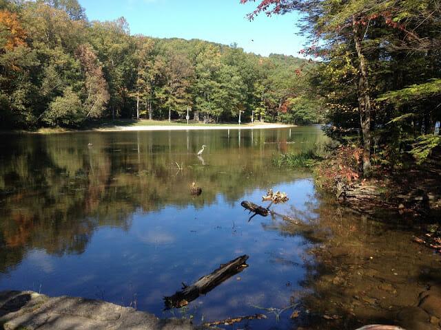 Saturday Life [10.10.15]: Camping in Pennsylvania