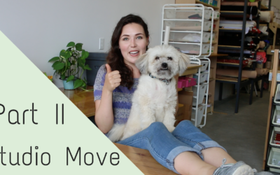 Part II Moving Vlog!